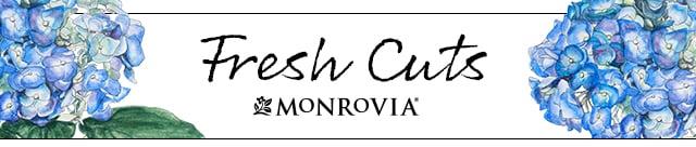 Fresh Cuts_3-5_MAR_header