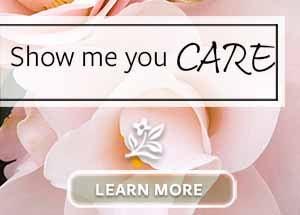 MON_300x215_NTT_Care_sw
