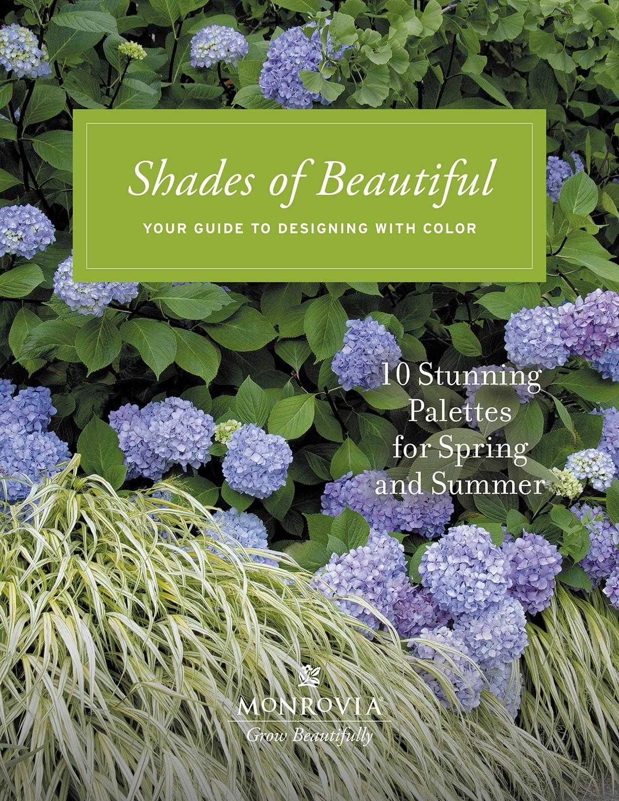 Palette book cover